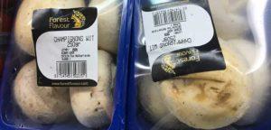 Mushroom at sales in Nigeria