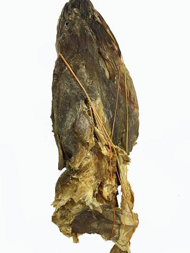 Stock fish Head